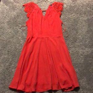 Express Coral Orange Dress